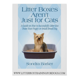 Litter Box Trainging For Dogs Poster