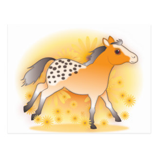 little appaloosa postcard