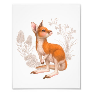 Little Aussie Friends - Kangaroo Photo Print