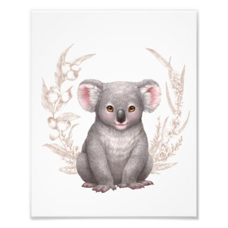 Little Aussie Friends - Koala Photo Print