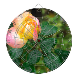 Little autumn rose with blur dartboard