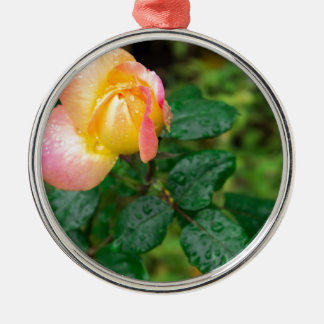 Little autumn rose with blur metal ornament