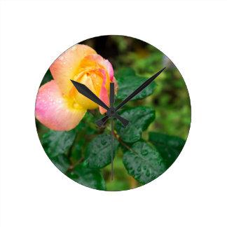 Little autumn rose with blur round clock