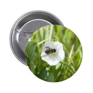 little bee pinback buttons