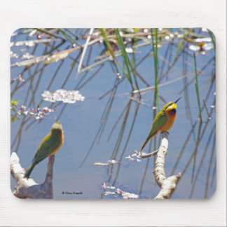 Little Bee Eater birds Mouse Pads