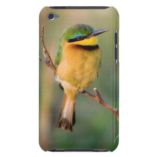 Little Bee-Eater Perching On A Branch, Maasai Barely There iPod Covers