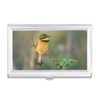 Little Bee-Eater Perching On A Branch, Maasai Business Card Cases