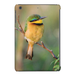 Little Bee-Eater Perching On A Branch, Maasai iPad Mini Covers