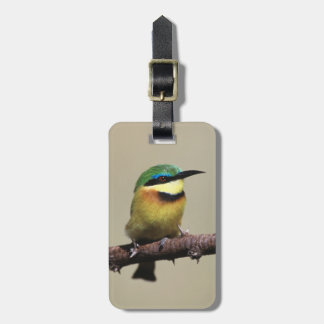 Little Bee-eater Travel Bag Tag