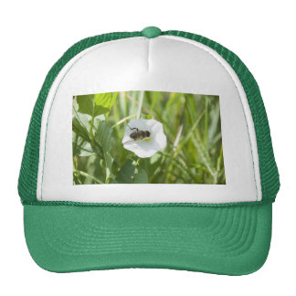 little bee trucker hat