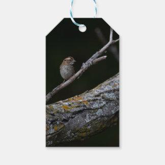 Little Bird Gift Tags