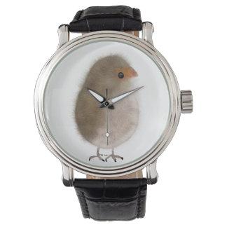 Little bird in a watch! watch