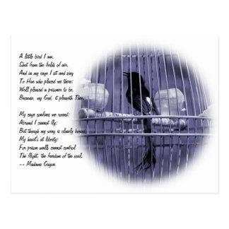 Little Bird in Cage Poem Postcard