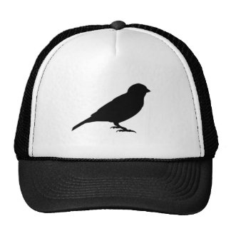 LITTLE BIRDY CAP