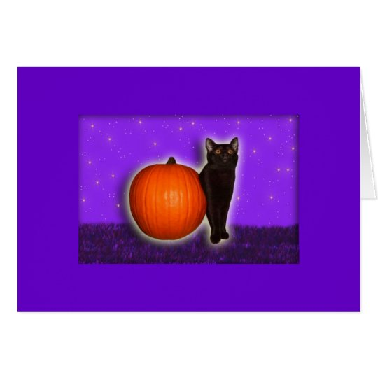 Little Black and Pumpkin Card
