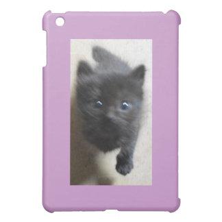 Little Black Manx with big blue eyes iPad Mini Covers