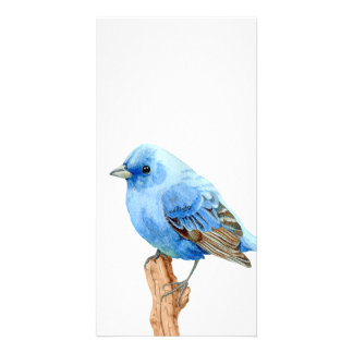 Little Blue Bird Customized Photo Card