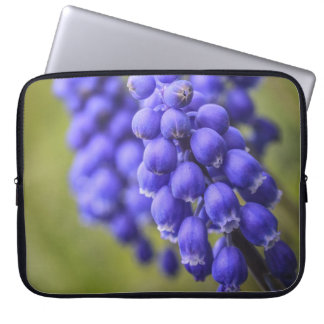 Little Blue Buds Laptop Sleeve
