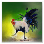 Little Blue Rooster Poster