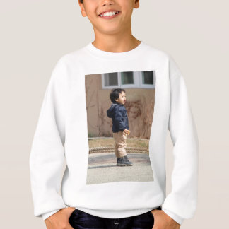 Little boy sweatshirt