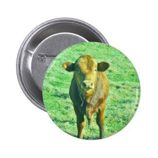 Little Brown Cow in Pastel Green Grass 6 Cm Round Badge