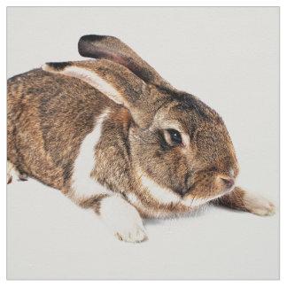 Little brown Rabbit Fabric