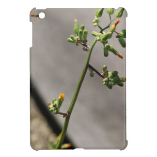 Little Bug, Little Flower iPad Mini Cases
