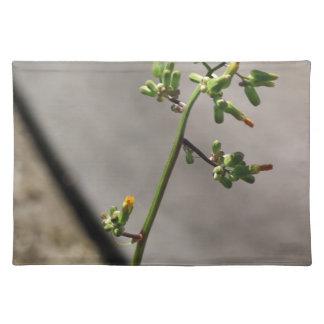 Little Bug, Little Flower Placemat