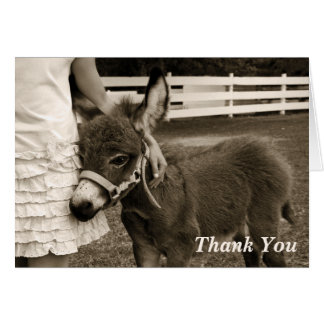 Little Burro Thank You Card