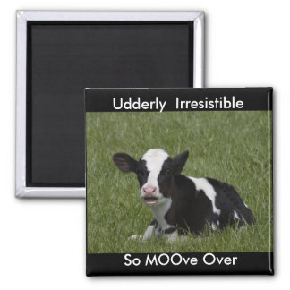 Little Calf Square Magnet