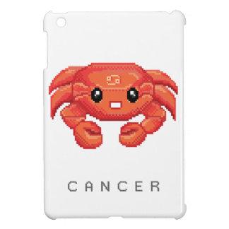 Little Cancer iPad Mini Cases