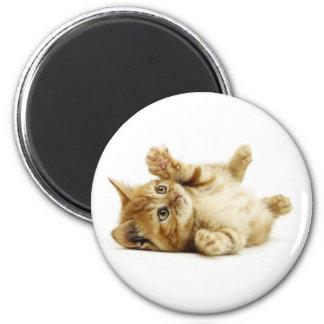 LITTLE CAT 6 CM ROUND MAGNET
