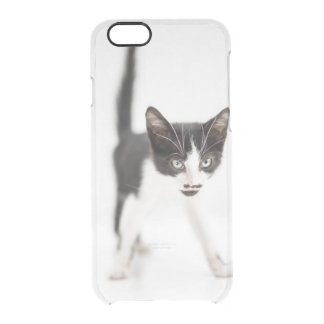 Little Cat Clear iPhone 6/6S Case