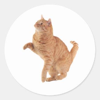 Little Cat Round Sticker