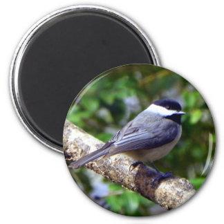 Little Chickadee 6 Cm Round Magnet
