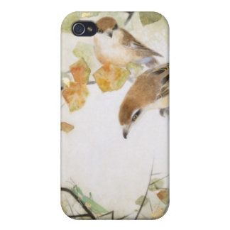 Little Creature-Bull-headed Shrikes iPhone Cases Covers For iPhone 4