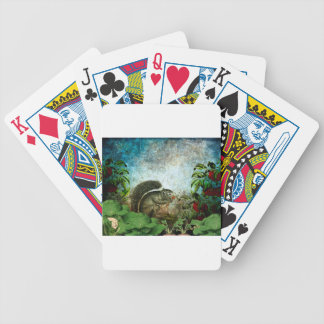 LITTLE CRITTER FOUND THE GARDEN BICYCLE PLAYING CARDS