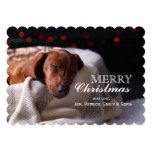 Little Cute Dachshund Puppy On Christmas 13 Cm X 18 Cm Invitation Card