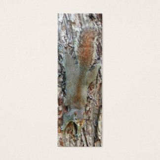 Little Cute Squirrel Mini Business Card