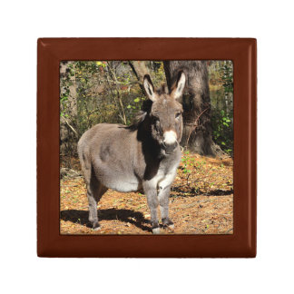 Little Donkey Gift Box
