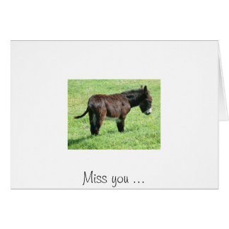 LITTLE DONKEY, Miss you ... Greeting Card