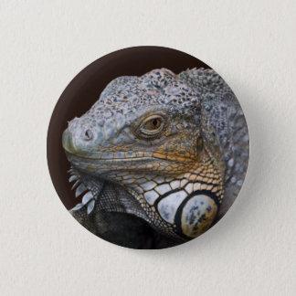 Little Dragon Bag 6 Cm Round Badge