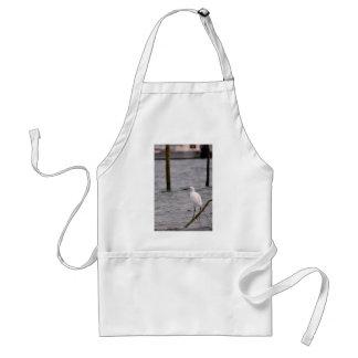 Little egret perched standard apron