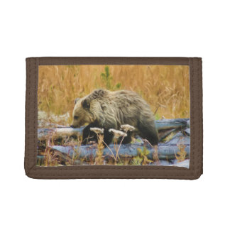 Little Explorer Grizzly Bear Cub Trifold Wallet