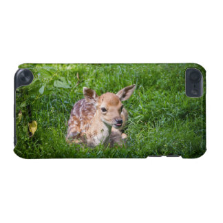 Little Fawn In Grass, Baby Animal iPod Touch 5G Cases