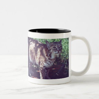 Little Feather Two-Tone Coffee Mug