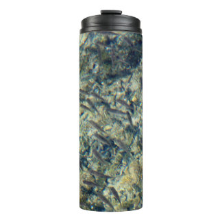 Little Fish Thermal Tumbler