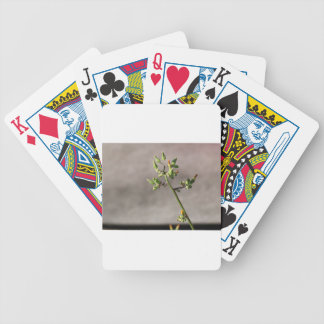 Little Flower Buds Bicycle Playing Cards