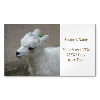 little Goat Magnetic Business Card