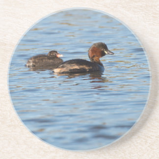 Little Grebe and Chick Coaster